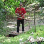 Building a stairway in the garden