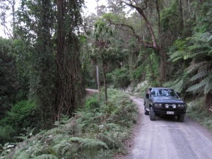 Kangaroo Valley, Upper River Road