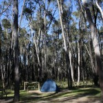 Smith Mill Campsite in the Grampians