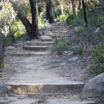 Pinnacle walk: some easy steps and some climbing required