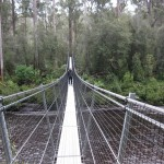 Bridge over Huon River, Tahune Forest, Tasmania