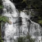 Triplet Falls, Otways