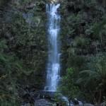Erskine Falls, Lorne