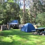 Campsite at Barham Picnic Reserve