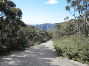 The steep but boring walk up the road to Mount William