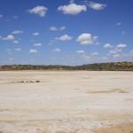 Outback near William Creek
