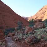 Walking trail - easy part