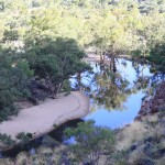 Creek and Waterhole in the Ormiston Gorge