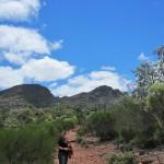 At the beginning of the Arkaroo Rock walk