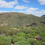 View from Wangara Lookout