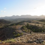 The track to Bunyeroo Gorge - breathtaking!