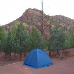 The proof: Camping at Bunyeroo Gorge