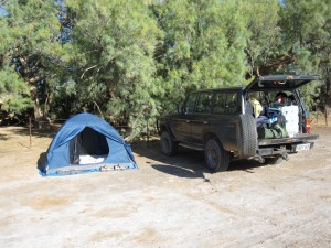 Our campsite at Coward Springs