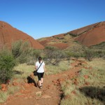 Cutie walking in the Olgas