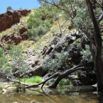 Serpentine Gorge - waterhole at the bottom
