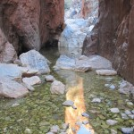 Standley Chasm - bottom filled with water
