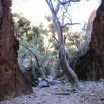 Standley Chasm - view backwards into the creek