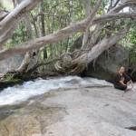 Cutie Creek Falls