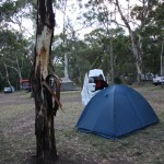 A campspot in Adelaid's south