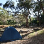 Campspot in Adelaide