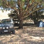 Our first camp spot at Mount Pleasant caravan park