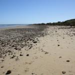 Telowie Beach