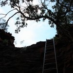Ladder out of Hancock Gorge