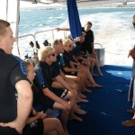 Whale shark swim briefing