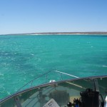 At the Ningaloo Reef