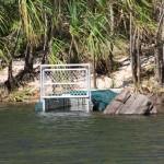 Crocodile trap on the way to Jim Jim Falls