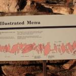 Aboriginal rock art: an illustrated menu