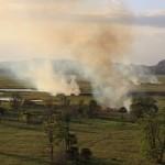 Bushfire in the wetlands
