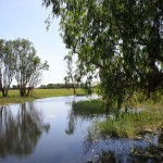 Yellow Water Billabong