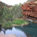 View from the Fortescue Falls