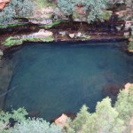 Circular Pool from above