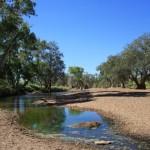 Carolines Pool