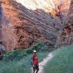 On the way to Cathedral Gorge