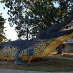 Big croc in Wyndham