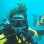 Cutie wreck diver