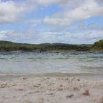 Swimming in Lake McKenzie