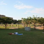 Public beach at Darwin Waterfront