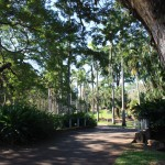 Royal Botanical Gardens, Darwin