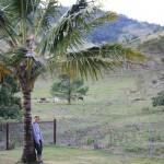 Cutie in the Airlie Beach hinterland