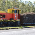 Cane train hauling waggons full of harvested cane chalks