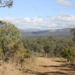 On the way to Carnarvon Gorge