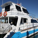 "Our whale-watching boat ""Freedom III"""