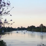 Mary River from Queens Park, Maryborough