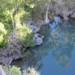Cutie below Cedar Creek Falls