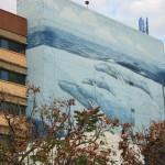 Whale mural, Bundaberg